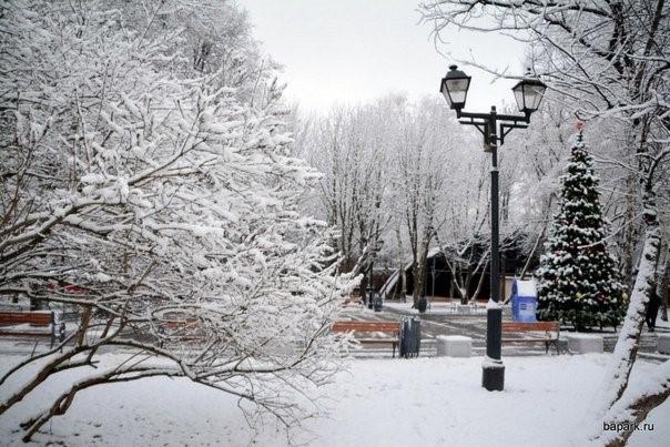 бапарк-зимой