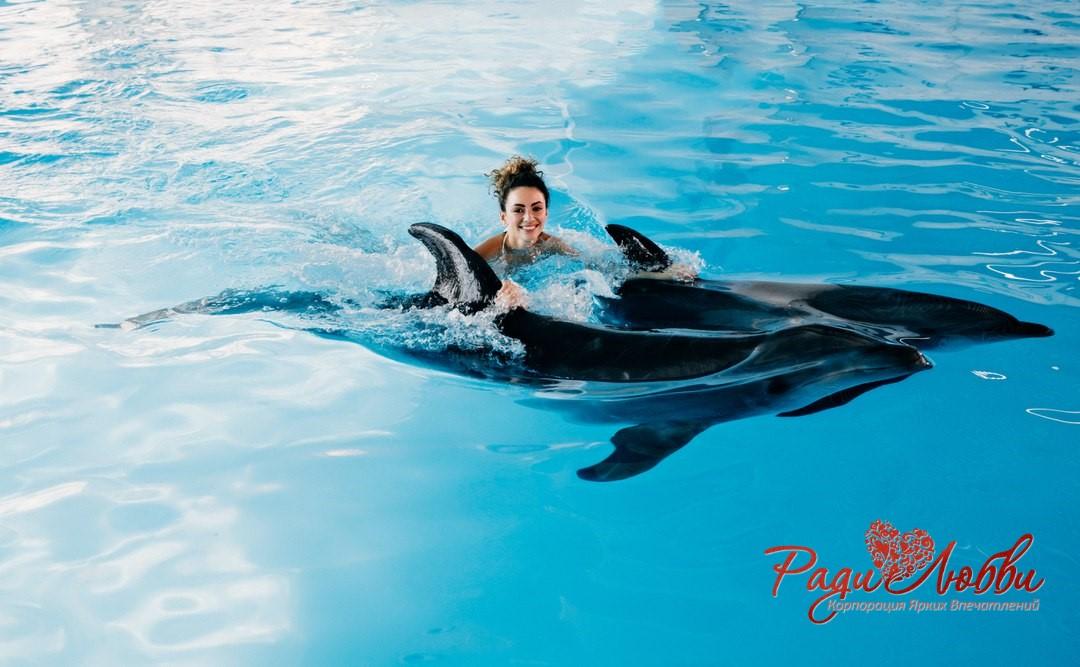plavanie s delfinami 5